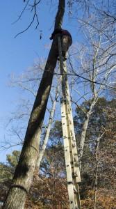 Up-light Installer on ladder
